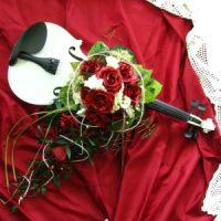 auf weißer Geige für Musikfreunde
